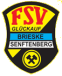 logo fsv brieske